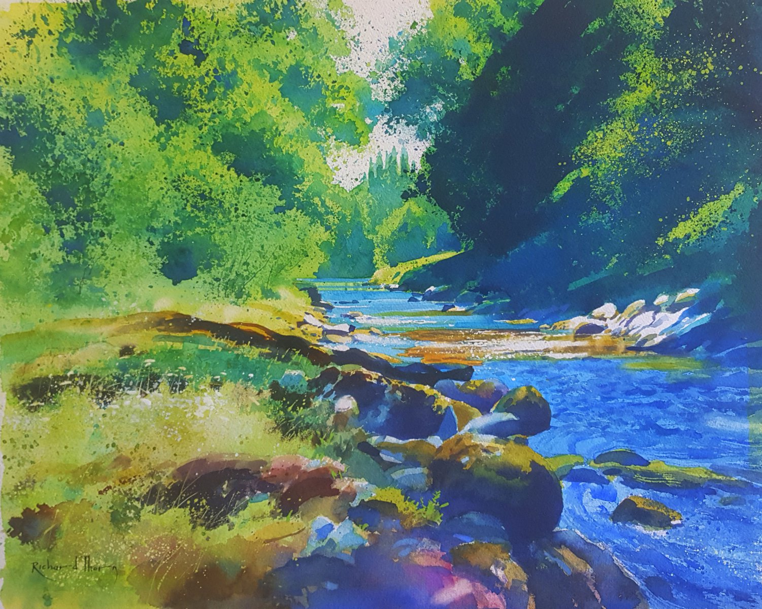 River Dart (at Ashburton country park) - Richard Thorn