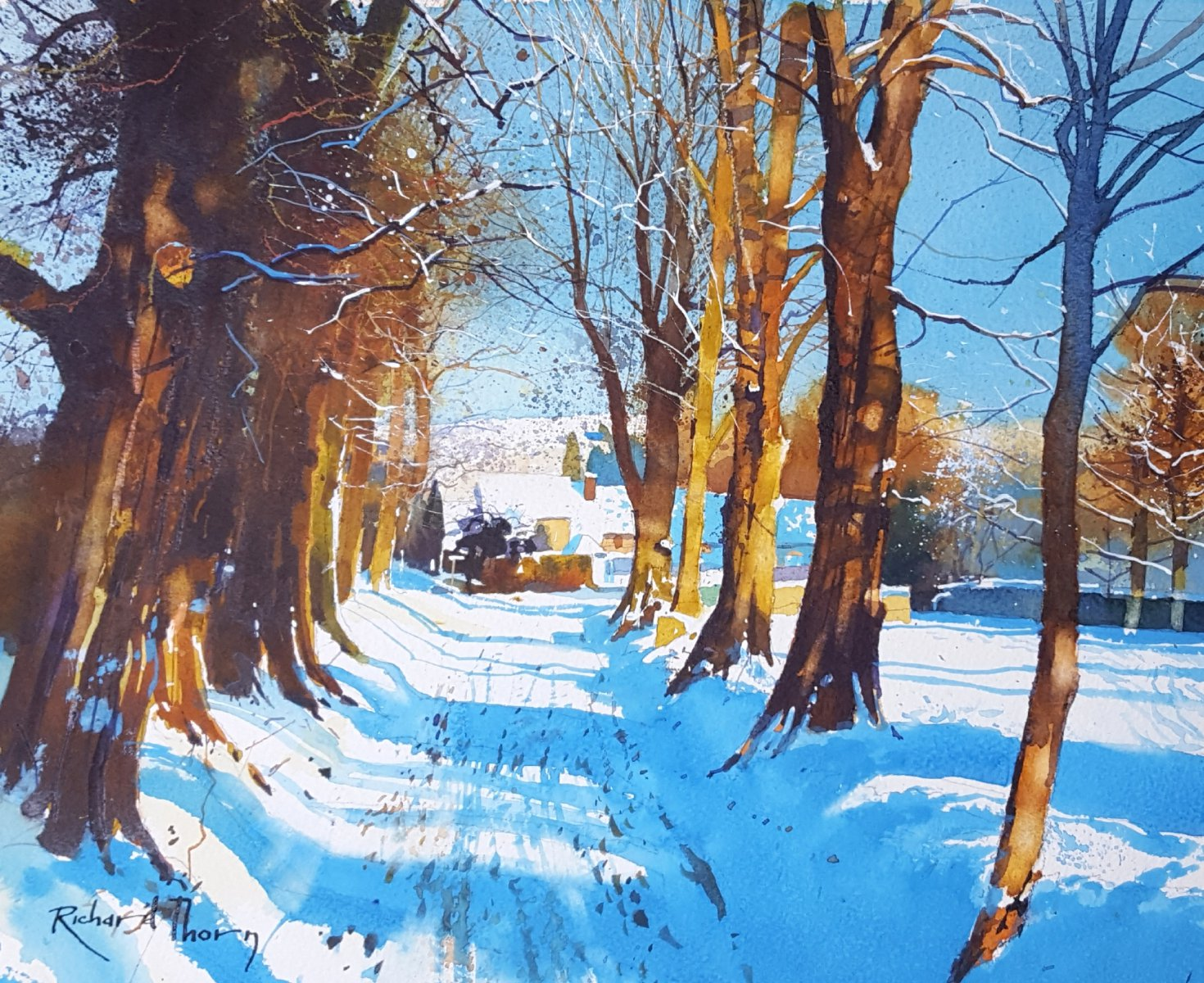 Winter avenue - Richard Thorn